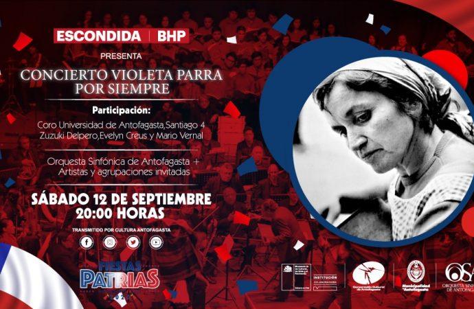 """Concierto """"Violeta Parra por siempre"""" para animar un """"18 unidos"""""""